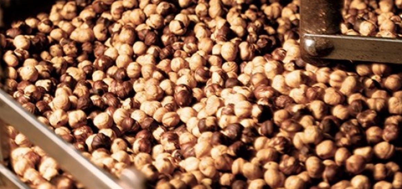 nocciole-cioccolato